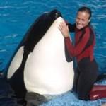 Killer Whale Kills Trainer Footage