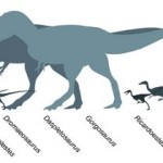 Smallest Dinosaur