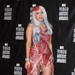 Lady Gaga Taxidermist