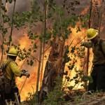 Los Alamos Fire & Evacuation