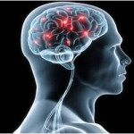 Study Shows Head Injuries Linked To Dementia