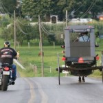 Amish Men Jailed Over Buggy Signs