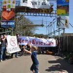Dale Farm Eviction