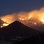 Montgomery County Wildfires