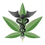 Arguments For Legalized Medical Marijuana