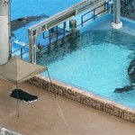 SEAWORLD CURATOR: TRAINER DAWN BRANCHEAU'S PONYTAIL LIKELY CAUSED ...
