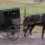 Amish Teen Bullet