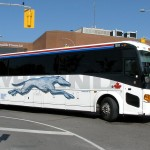 Greyhound 3,100 Destinations