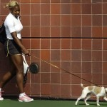 Dog Jackie Serena Williams