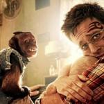 Warner Bros Settles Hangover 2 Tattoo Lawsuit