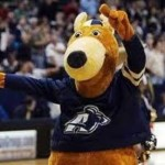 University Of Acron Zippy The Kangaroo