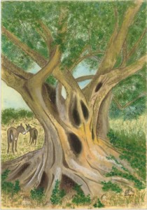 Olive Tree Paintings